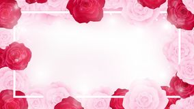 Valentines banner contains red background ,white and red rosetop view valentine floral invitation rounding by pink and red rosesto Stock Photos