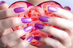 Valentines card-Rose and hearts in female hands. With beautiful manicure Royalty Free Stock Photos