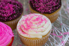 Valentines Cupcakes. Colorful Valentines Cupcakes with pink sprinkles, chocolate and vanilla Royalty Free Stock Photo