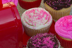 Valentines Cupcakes. Colorful Valentines Cupcakes with pink sprinkles, chocolate and vanilla Stock Images