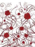 Valentines day background. Red roses on a vine on white background Royalty Free Stock Photos