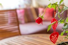 Valentines Day background. Handmade reds hearts and red rose on wooden table Royalty Free Stock Photography