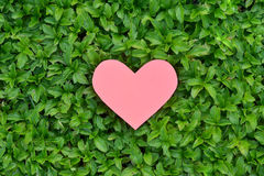 Valentines Day background. Heart on Valentines Day background Royalty Free Stock Photography