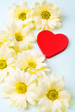Valentines day background with heart. Heart with cheerful asters. Valentine's day composition Stock Images