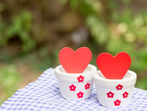 Valentines day background with red hearts in white pots. Love concept Stock Photography
