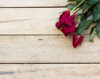 Valentines day background with red roses on wood Royalty Free Stock Images
