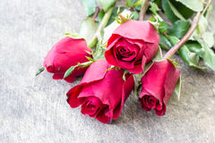 Valentines day background with red roses on wood Stock Photos