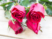 Valentines day background with red roses on wood texture for bac Stock Photos