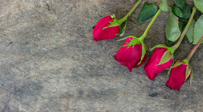 Valentines day background with red roses on wood texture for bac Royalty Free Stock Images