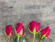 Valentines day background with red roses on wood texture for bac Royalty Free Stock Photo