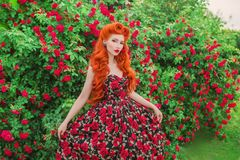 Valentines Day background. Retro girl with red lips in stylish dress with print of roses in beautiful summer garden. Valentines Da royalty free stock photo