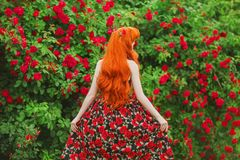 Valentines Day background. Retro girl in stylish dress with print of roses in beautiful summer garden. Valentines Day beauty redhe stock images