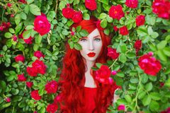 Valentines Day background. Spring rose flower garden. Fabulous lady with red lips in dress. Gardening on farm. Awesome flower wall stock photography