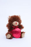 Valentines Day Bear Stock Images