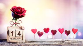 Valentines Day - Calendar Date With Rose Royalty Free Stock Images