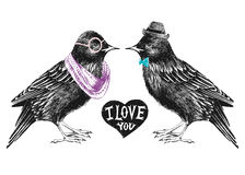 Valentines day card with couple of starlings Stock Image