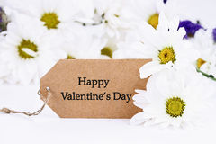 Valentines Day Card and Daisies. Extreme shallow depth of field with selective focus on card Royalty Free Stock Photography