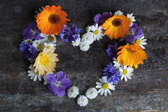 Valentines day card. Heart of flowers Royalty Free Stock Photo