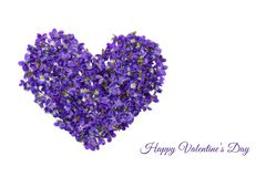 Valentines day card. Heart shape flowers. Violets love symbol isolated on white background. Template for greeting card. Valentines day card. Heart shape flowers stock image