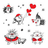 Valentines day card with hedgehogs and hearts. Stock Photography