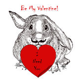 Valentines Day card with rabbit holding red heart. I need you. Cute greeting Valentine's Day card with rabbit holding red heart. I need you Stock Photography