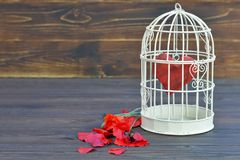 Valentines Day card, Valentines heart inside the bird cage Stock Photography