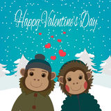 Valentines day card with romantic couple monkeys.Vector illustration Royalty Free Stock Photography