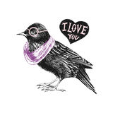 Valentines day card with starling and heart Stock Photography