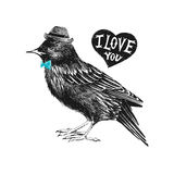 Valentines day card with starling and heart Stock Images
