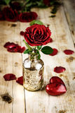 Valentines Day Celebration. Romantic Valentines Day Celebration with roses royalty free stock images
