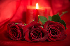 Valentines Day Celebration. Romantic Valentines Day Celebration with roses and candles royalty free stock images