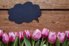 Valentines day communication speech bubble and tulips. Humorous message for spring emotions easter time stock image