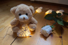 Valentines day - Cute teddy with heart shaped fairy lights and a white rose on wooden floor. Teddy sitting on a wooden floor and holding heart shaped fairylights Royalty Free Stock Image