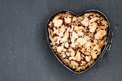 Valentines  day dessert. Heart shaped chocolate cake in metal fo Royalty Free Stock Photos