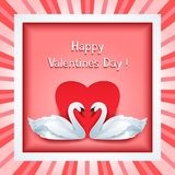 Valentines day frame with two 3d swans and heart Stock Image