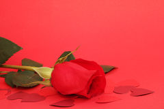 Valentines Day gift. Beautiful rose and small hearts on red background Stock Photo