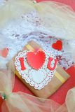 Valentines Day gift Stock Images