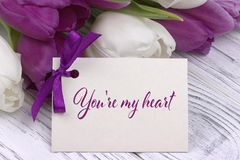 Valentines day greeting card, tulips white purple ribbon, white wooden background. Valentines day greeting card, tulips white purple ribbon, white wooden Stock Image