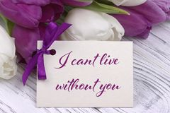 Valentines day greeting card, tulips white purple ribbon, white wooden background. Valentines day greeting card, tulips white purple ribbon, white wooden Royalty Free Stock Photo