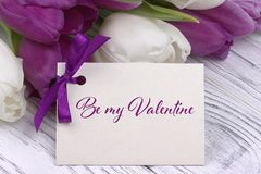 Valentines day greeting card, tulips white purple ribbon, white wooden background. Valentines day greeting card, tulips white purple ribbon, white wooden Royalty Free Stock Photos