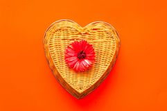 Valentines day greeting postcard. Gerbera flower on wicker texture on coral background. Festive concept. Flat lay, top view. Closeup, copy space royalty free stock photo