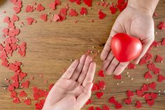 Valentines Day health care love holding red heart and world health day royalty free stock photos