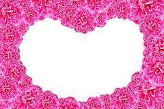 Valentines Day Heart Made of Pink Roses Isolated on White Backgr Stock Photography