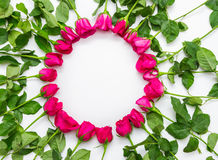 Valentines Day Heart Made of Red Roses Isolated on White Backgro Royalty Free Stock Images