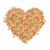 Valentines Day Heart Made of Watercolor Roses Royalty Free Stock Photography