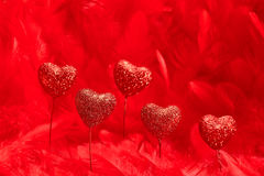 Valentines Day. Hearts red sparkling on feathers Royalty Free Stock Photos
