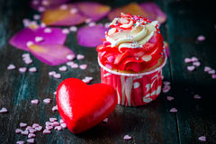 Valentines Day homemade cupcakes with pink icing. Stock Images