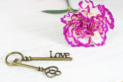 Valentines day key to love and pretty flower background Stock Photos