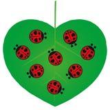 Valentines Day - Love Bugs - Illustration. Valentines Day - Love Bugs - Lady Birds - Illustration Royalty Free Stock Photos