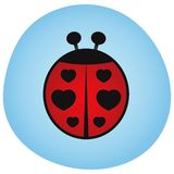 Valentines Day - Love Bugs - Illustration. Valentines Day - Love Bugs - Lady Birds - Illustration Stock Photo